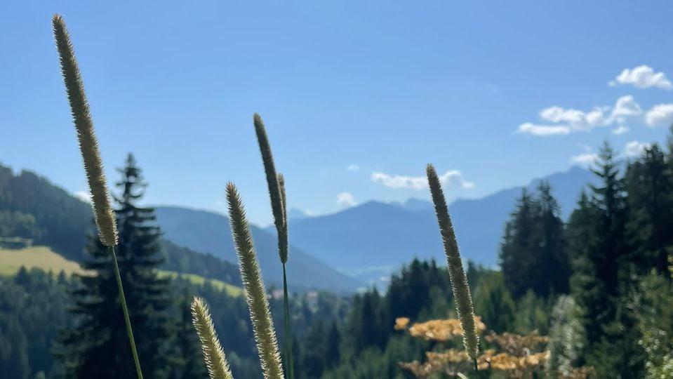 Un'oasi di benessere in Alto Adige