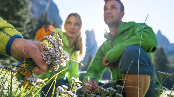 4 herrliche herbstliche Urlaubstage mit Wellness