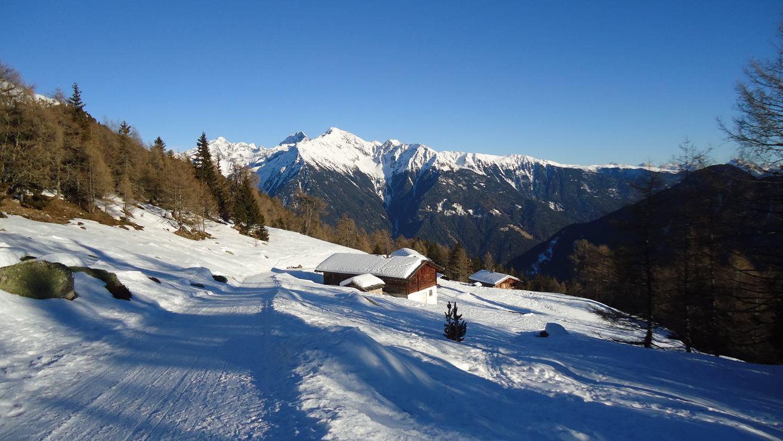 Buchinger Fasten in Winterstille